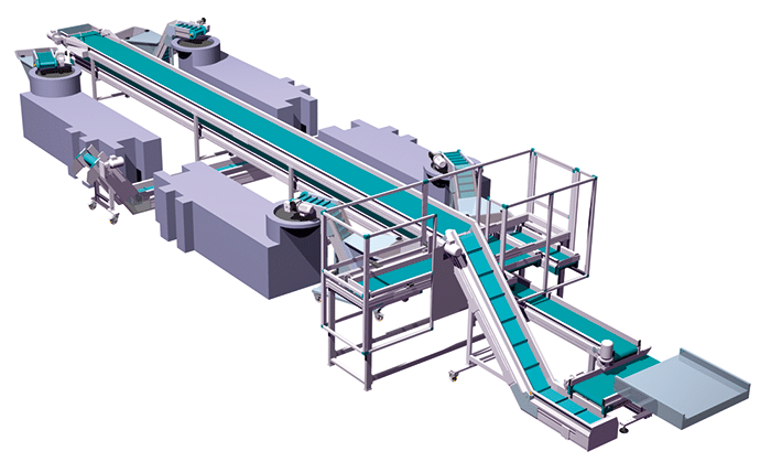 MB Conveyors - Multi Conveyor System